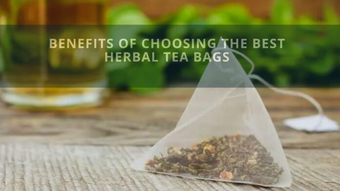 Benefits of Choosing The Best Herbal Tea Bags
