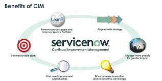 Establishing a ServiceNow Strategy for Your Business